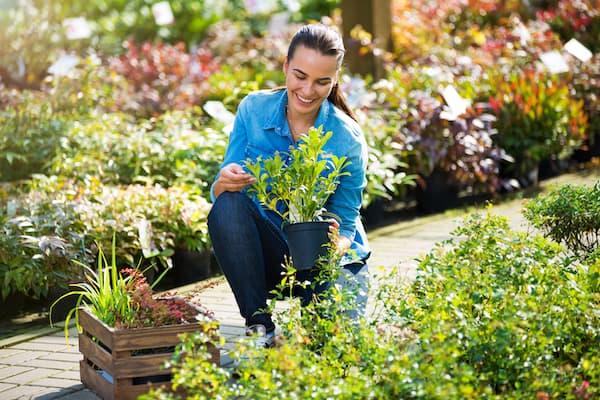 Gartendienste